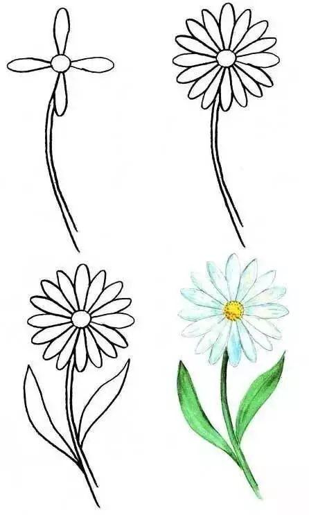 简笔画丨植树节,动植物的简笔画图解教程,感受大自然
